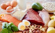 چه غذاهایی پروتئین دارند؟